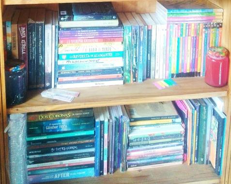 biblioteca personal 2.jpg